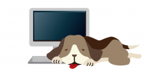 パソコンとくっついている動物ってなーんだ?