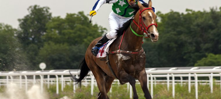 2月9日、引退を発表した競馬騎手で、兄に同じく騎手の武豊を持つのは誰でしょう?