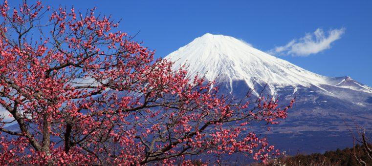 今日2月23日はゴロ合わせで「富士山の日」ですが、外国人として初めて富士山頂に到達したといわれるのは誰?